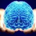 Epigenetics and the nocebo effect!
