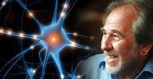 Professor Bruce Lipton Gives A Great Interview On Homeopathy